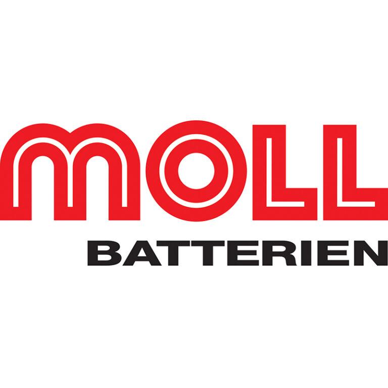Lead battery maker Moll Batterien finds buyer after year-long insolvency battle