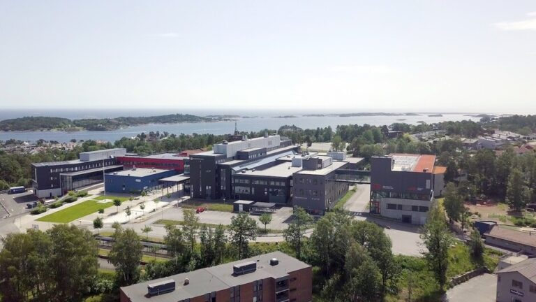 Norway, the University of Agder seeks professor to head large-scale battery initiative