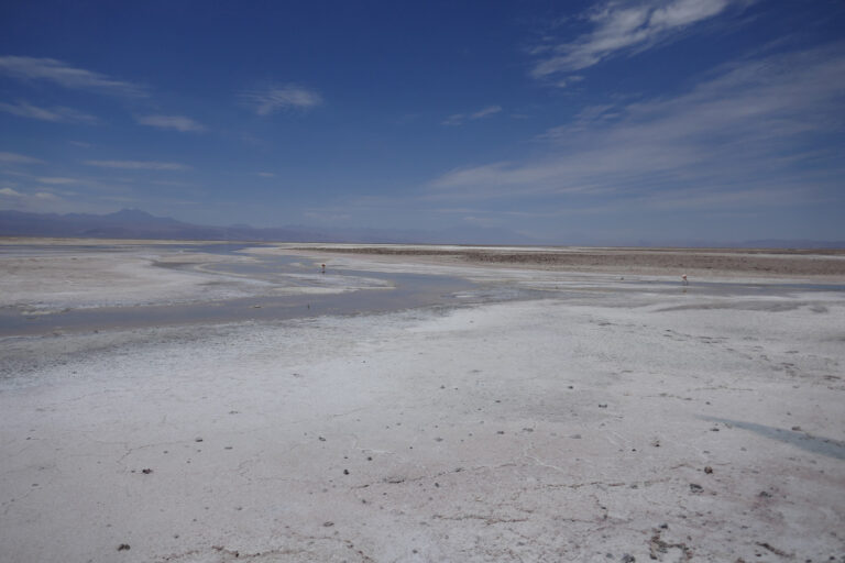 BASF, Daimler, Fairphone and Volkswagen Group funding partnership for natural resource management, including lithium, in Chile
